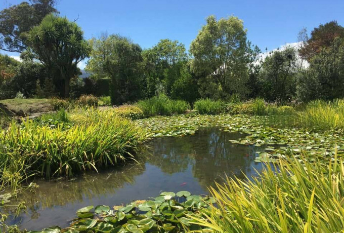Outdoor Venue with established gardens. Only 30 mins from Christchurch photo 3