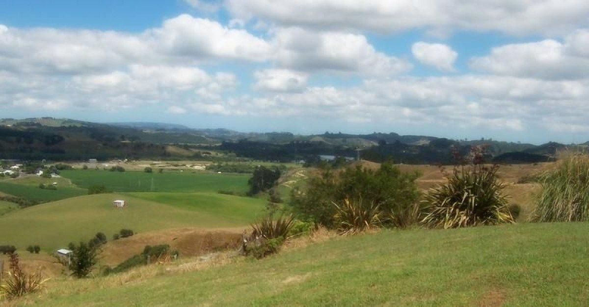 Privacy and Views between Auckland and Hamilton photo 0
