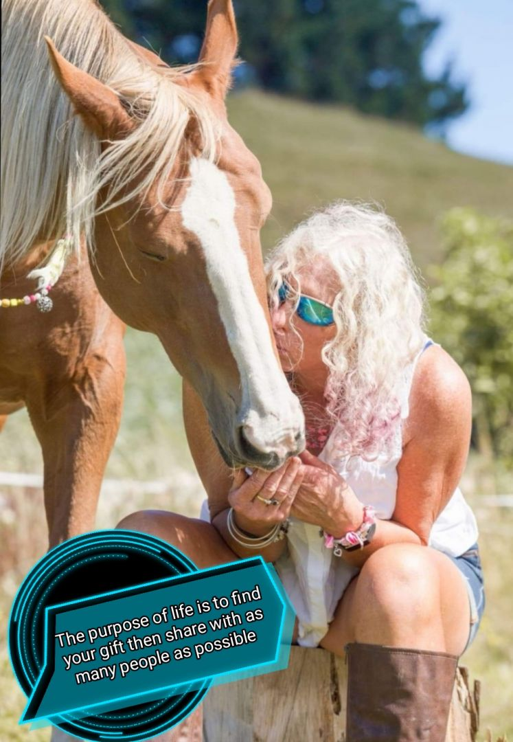 Clicker training/working through problems with your horse photo 2