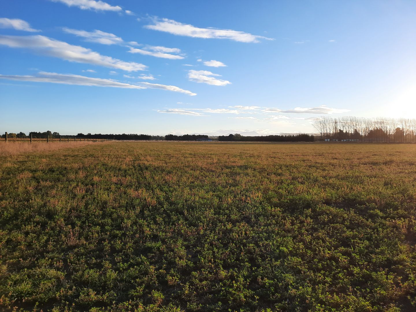 $119 per hectare. Shared land almost in town (Ashburton). photo 0