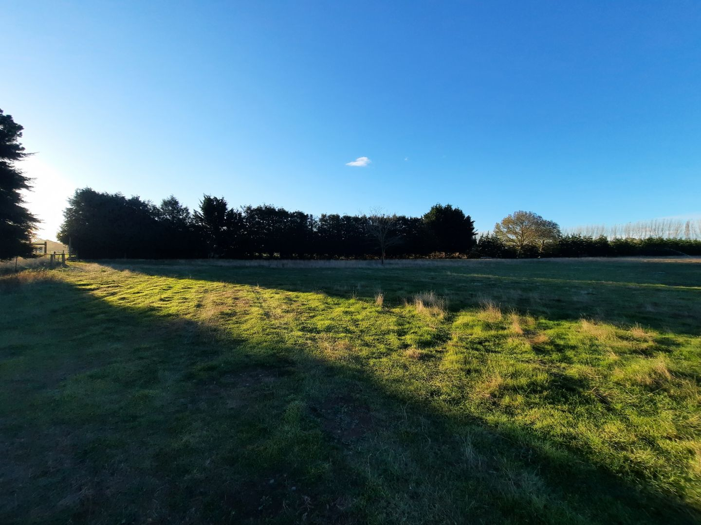 $119 per hectare. Shared land almost in town (Ashburton). photo 1