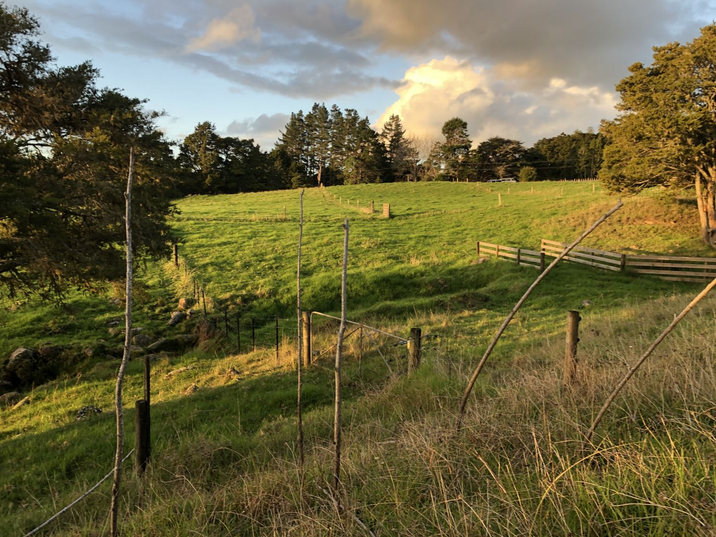 Section for motorhome/caravan, Northland, the winterless north! photo 4