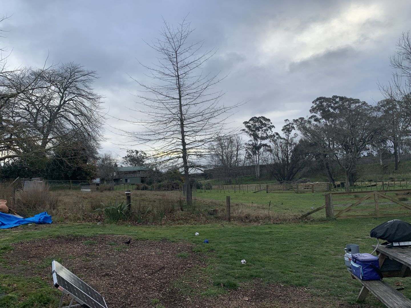 Peaceful land for off-grid living photo 1